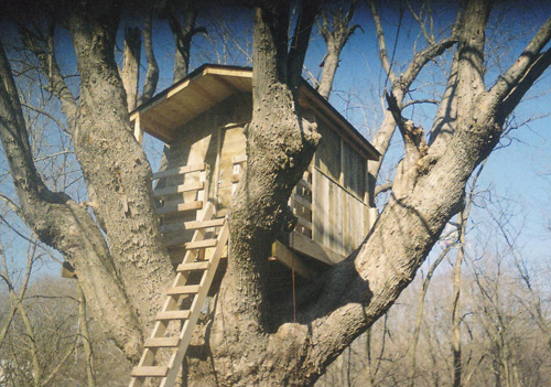Tree Houses by JD Construction.